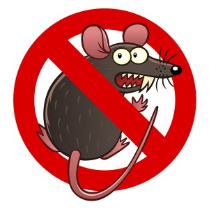 Prevent Rodent and Rodent Damage in Waipahu, HI