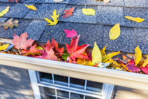 Fall Home Maintenance Checklist for your Waipahu, HI home